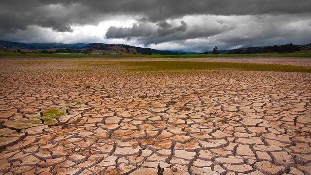 Área afectada por la sequía