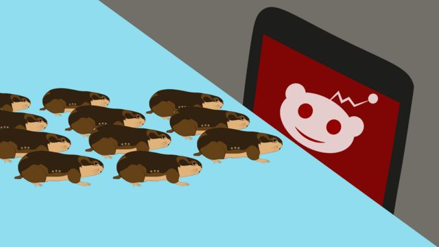 Picture of Lemming investors - group of lemmings looking at a screen with the Reddit logo (a smiling alien head) on it