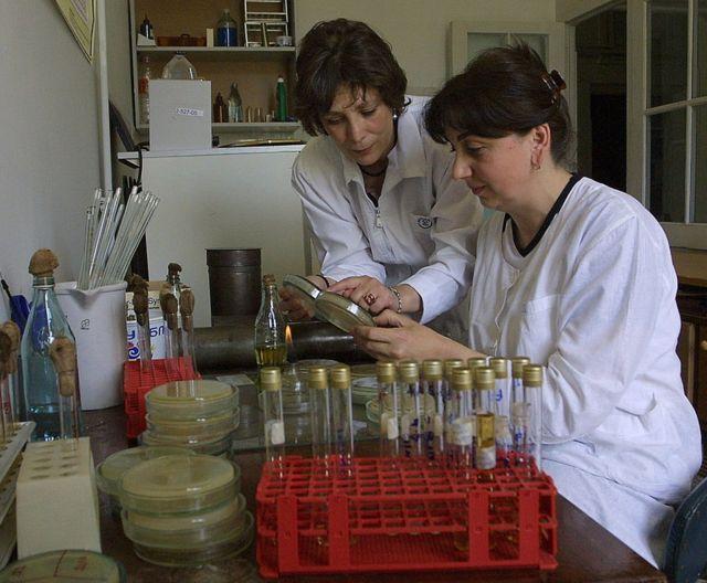 Investigadoras del Instituto Eliava.