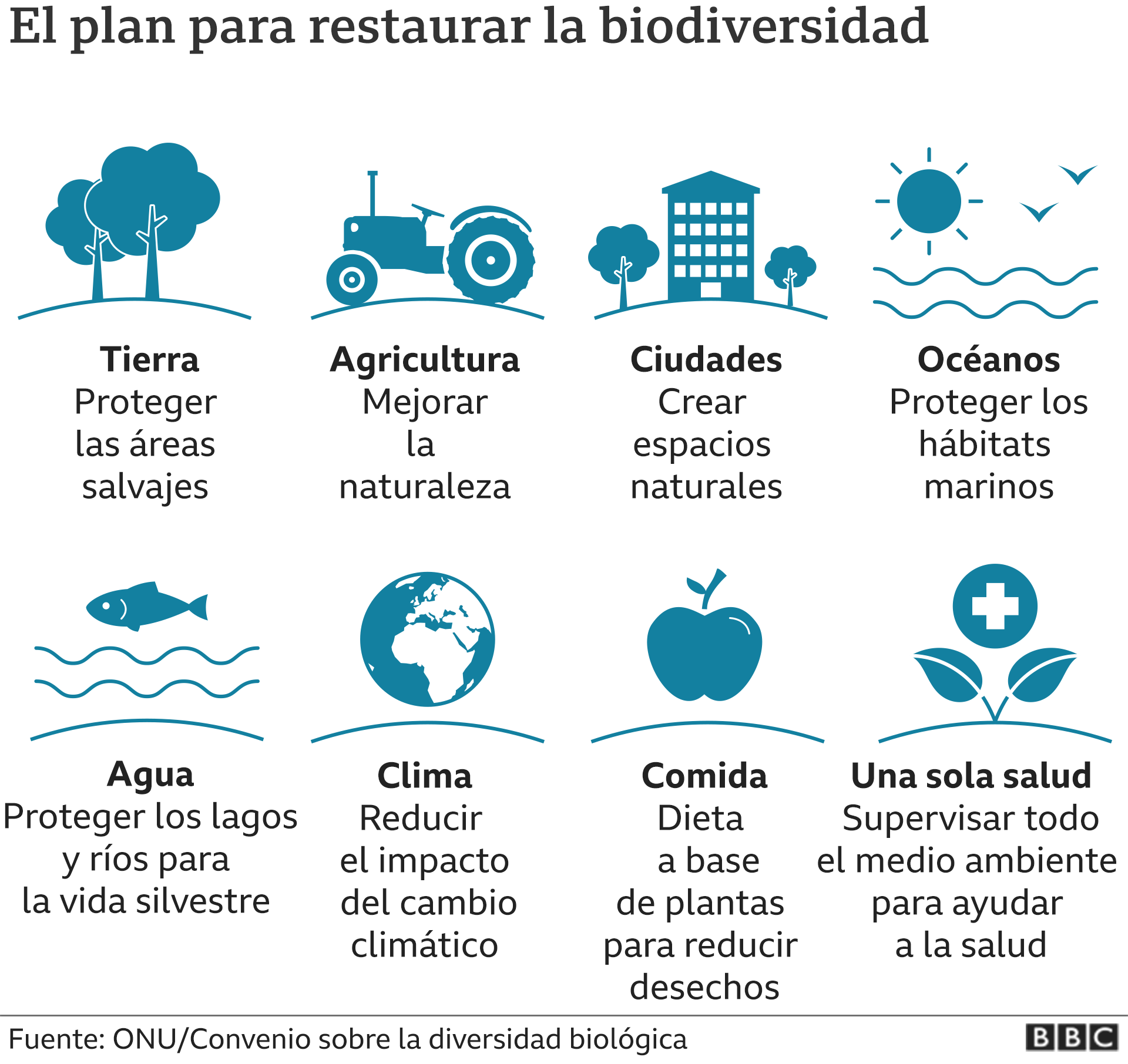 El plan para restaurar la biodiversidad.