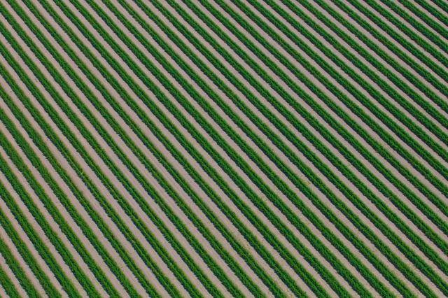 صور جوية تبرز تنسيق المزارع الاسترالية.
