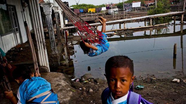 banjir, rob, pesisir Indonesia, tenggelam, Desa Bedono