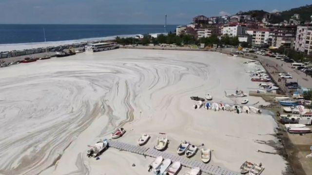 Marmara Denizi'nde 'deniz salyası': Asıl korkumuz buzdağının görünmeyen,  denizin altındaki kısmı - BBC News Türkçe