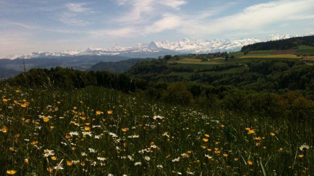 Imagen de archivo de los Alpes suizos.