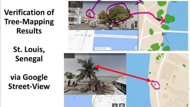 Imágenes de Google Maps mostrando la presencia de árboles