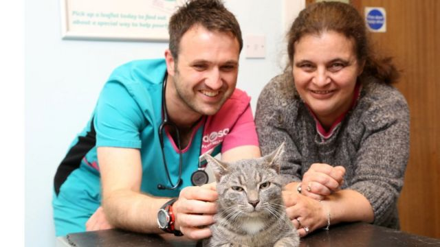 Ветеринар Джеймс Келлоу осматривает Бобби вместе с хозяйкой котенка Лизой Кифи