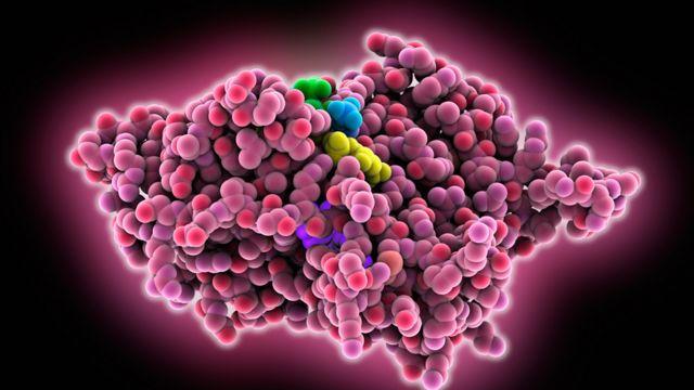 Ilustración de una enzima