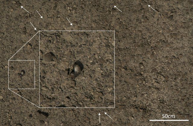 example image of rocky ground with fossils