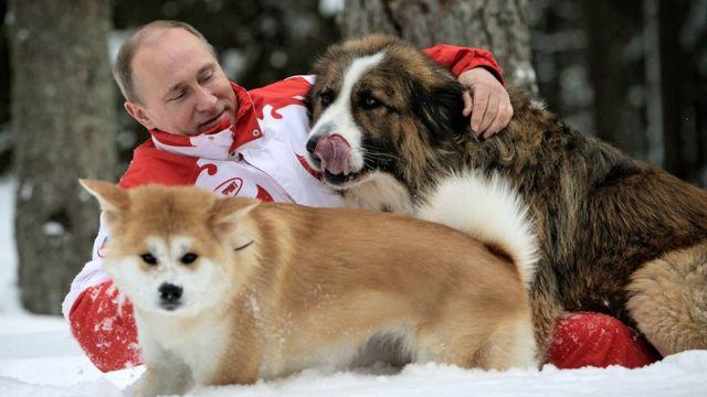 Putin se igra u snegu sa svojim psima u predgrađu Moskve