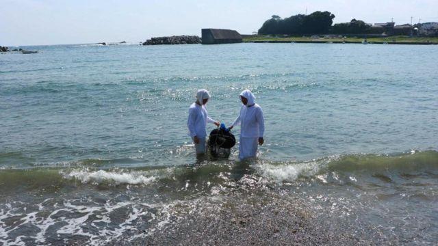 Ama japonesas sacando una cesta del mar