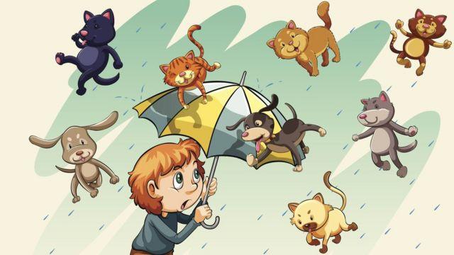 Кошки и собаки, падающие с неба