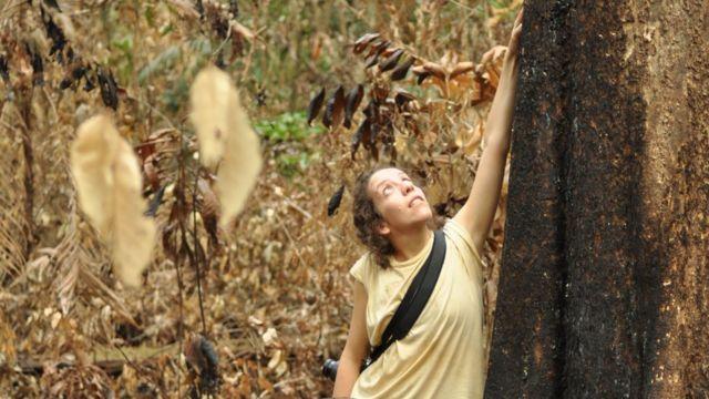 Autora principal do estudo, Erika Berenguer, em uma floresta amazônica recentemente queimada durante o El Niño de 2015
