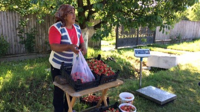 Romanian strawberry seller