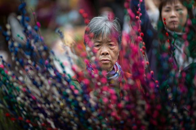 หญิงชาวฮ่องกงกำลังเลื้อซื้อดอกไม้ เพื่อเตรียมตัวฉลองวันตรุษจีนในวันพรุ่งนี้ ซึ่งถือว่าเป็นวันปีใหม่ของชาวจีน