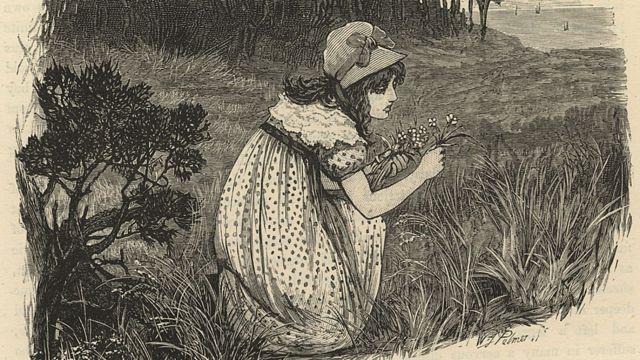 Mary Fairfax Somerville en la pradera