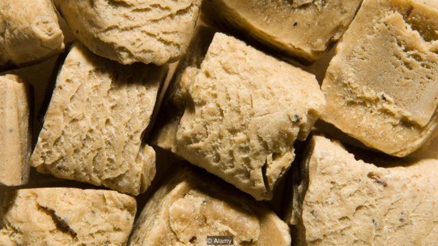 Como la especia conocida como asafétida, el láser habría estado hecho con la resina lechosa de las raíces del silfio. (Foto: Alamy)