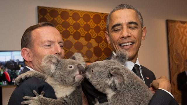 Obama e um coala