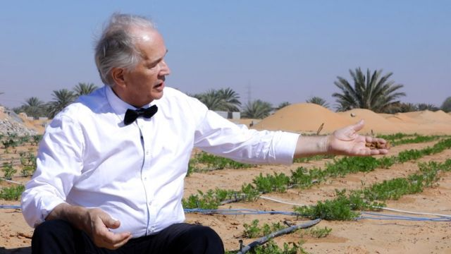 The innovation turning desert sand into farmland