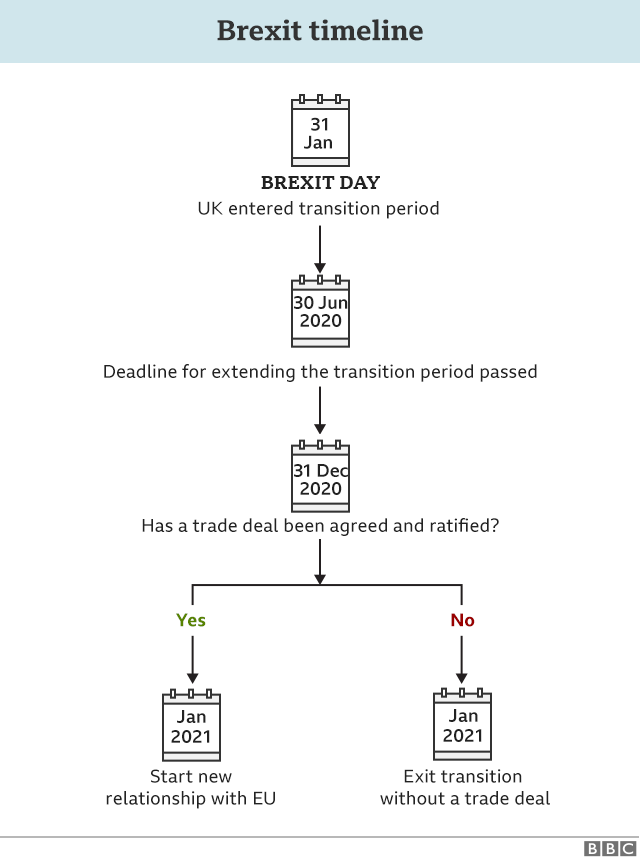 Flowchart explaining the next steps