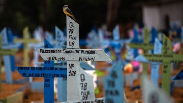 Cruzes de madeira em cemitério