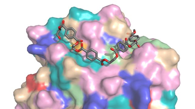 Модель молекулы фермента PETase