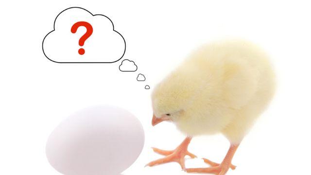 Pollito junto a un huevo y un signo de interrogación