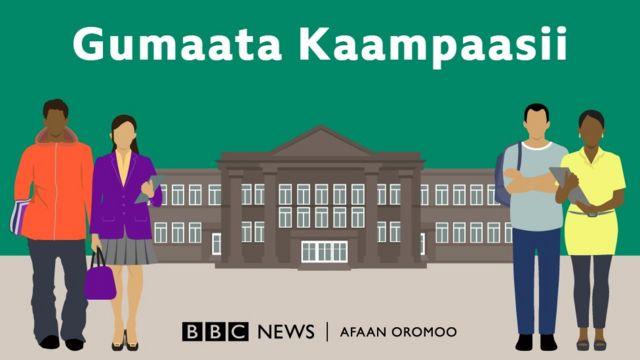 Odeessi Gumaata Kaampaasii, jiruufi jireenya barattoota yunivarsiitii hirmaachisuun BBC Afaan Oromoo irraa torbaniin altokko kan isinii dhiyaatudha.