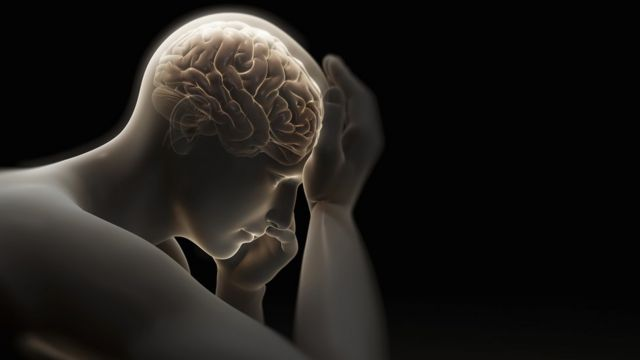 Imagen de un cerebro