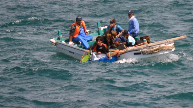 Treinadores de golfinhos levando um animal pela lateral do bote para ser treinado em um tanque, em 2012