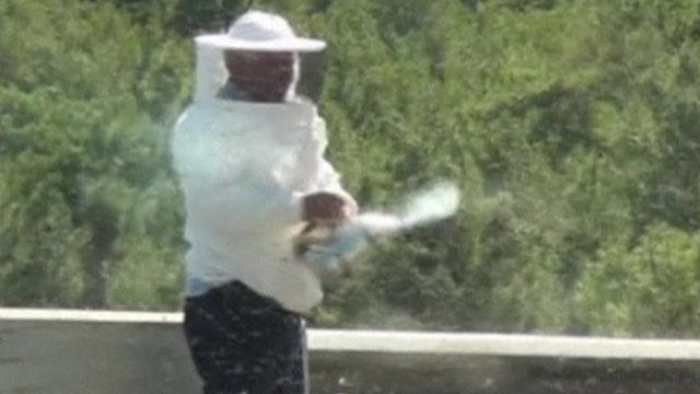 Beekeeper surrounded by swarm of bees