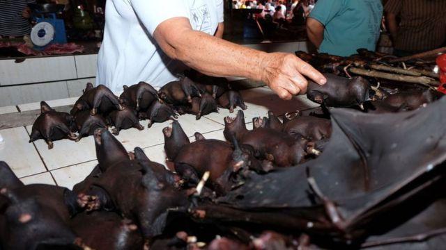 Летучие мыши на рынке в Индонезии