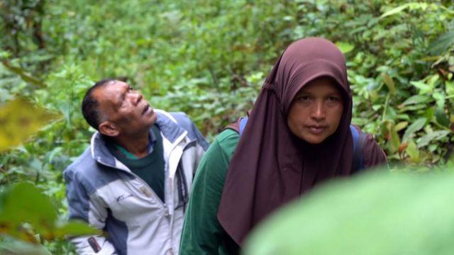 Perempuan, ibu rumah tangga, penjaga hutan, Aceh
