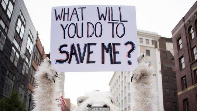 जलवायु परिवर्तन का विरोध वैज्ञानिक जानकारी नहीं, राजनीतिक विचारधारा के आधार पर हुआ.