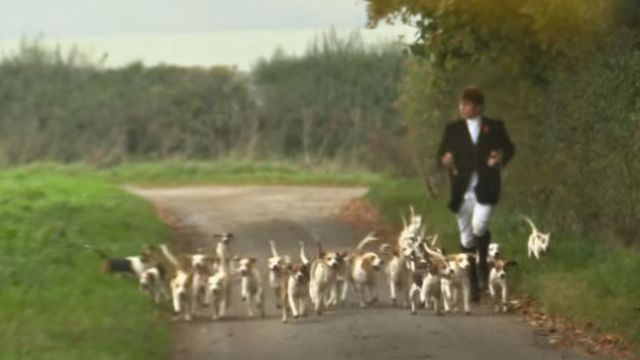 A person running with hunting dogs