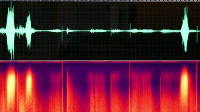 Sound wave (c) UC Berkeley