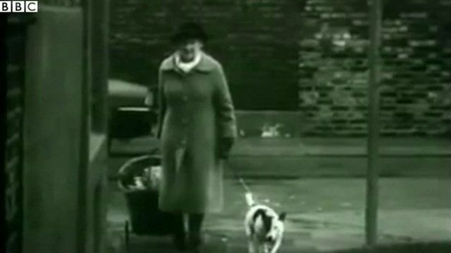 A woman walking down the street with shopping trolley and dog