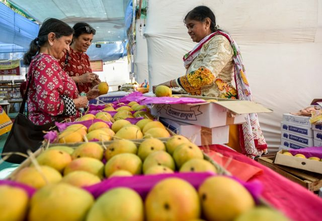 Two Indian women at a maket, buying mangoes
