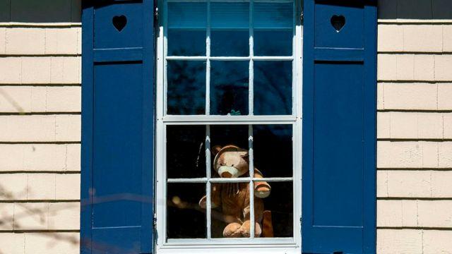 В США и Австралии многие люди ставят на окно мягкие игрушки, чтобы дать детям возможность немного отвлечься во время пандемии