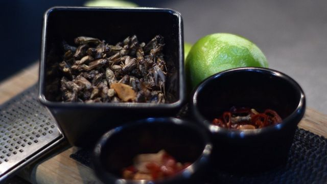 Roasted Cockroach and ingredient wey dem wan use take prepare am