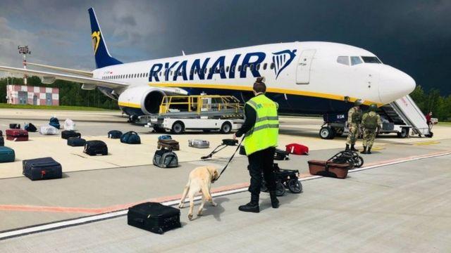 Sniffer dog checks bags taken off Ryanair flight at Minsk