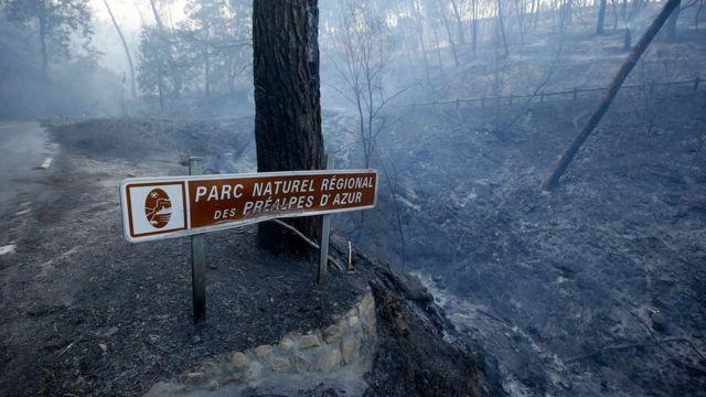 Внаслідок пожежі постраждав національний парк Préalpes d'Azur