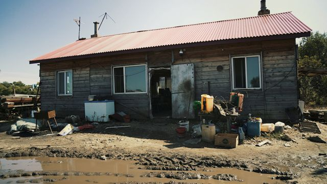ферма рядом с Волочаевкой, ЕАО