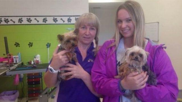 ハードさんが愛犬「ピストル」と「ブー」を申告せずにオーストラリアに持ち込んだことは、美容室が掲載した写真から発覚した