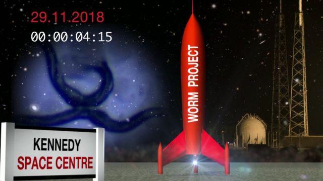 Изображение с ракетой, которая отправит червей в космос