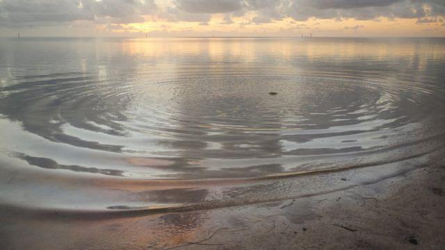 Ondas circulares en agua