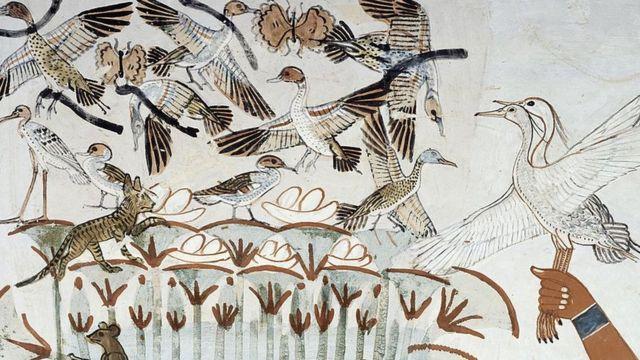 رسوم لطيور وبيض في مصر القديمة