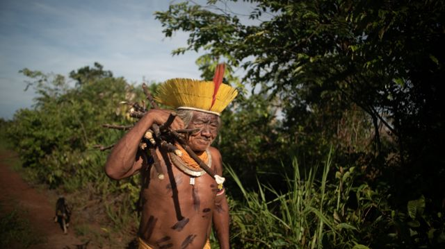 Agricultura indígena