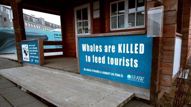 """Una casa con un cartel que dice """"Matan a las ballenas para alimentar a los turistas"""""""