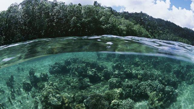 Mar y tierra