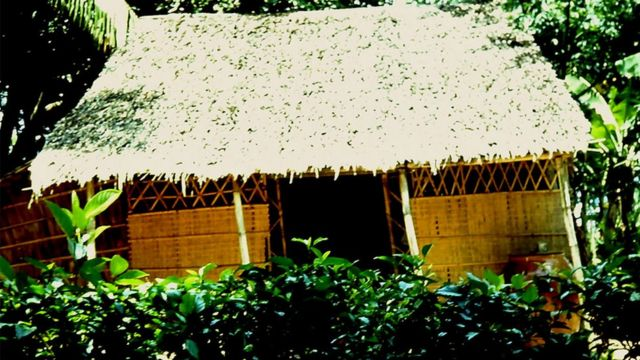 A cabana onde a mãe de Tuy morava